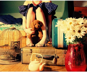 flores, flowers, and legs image