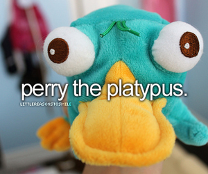 perry, Platypus, and disney image