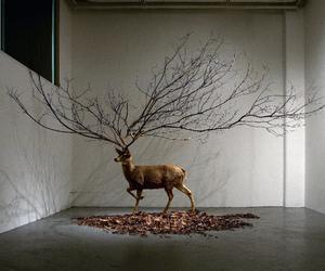 art, deer, and tree image