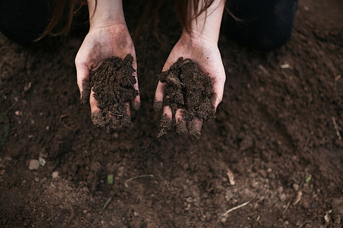dirt, hands, and nature image