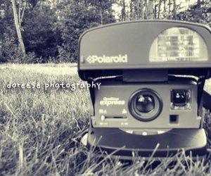 camera, grass, and photography image