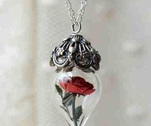 rose and necklace image