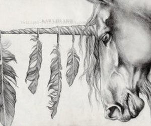 unicorn, feather, and draw image