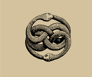 art, serpent, and symbol image