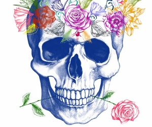 caveira, crow, and red roses image