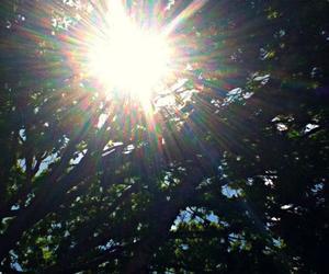 photography, sun shine, and sun image