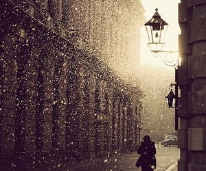 snow, rain, and winter image