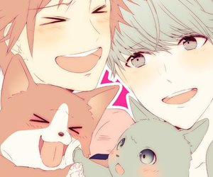 Boys Love, persona 4, and cat image