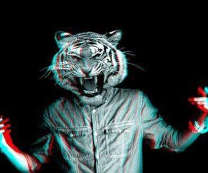 tiger, boy, and 3d image