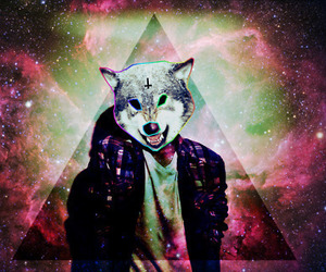 wolf, hipster, and galaxy image
