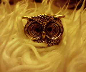 fashion, vintage, and owl image