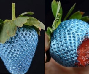 blue and strawberry image