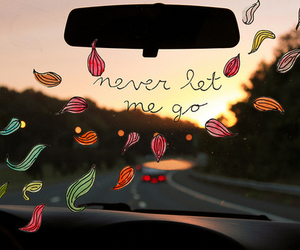 quote, text, and never let me go image