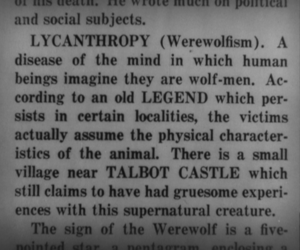 werewolf and lycans image