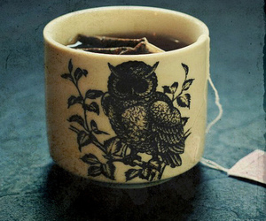 owl, tea, and cup image