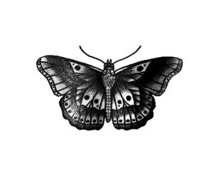 tatoo, jh, and harry image