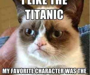 titanic, cat, and funny image