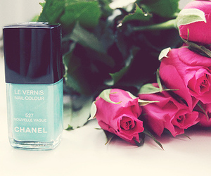 chanel, rose, and blue image