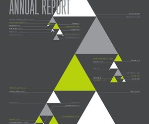annual report and design image