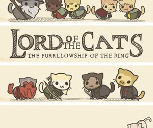 cat and LOTR image