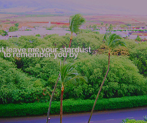 hawaii, photography, and stardust image