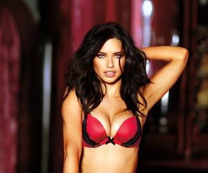 Adriana Lima, Victoria's Secret, and girl image