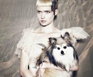 dog, girl, and grimes image
