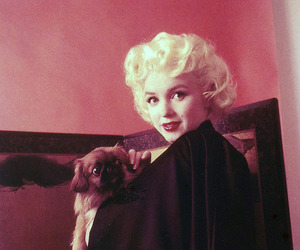 Marilyn Monroe and vintage image