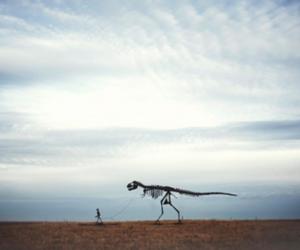 dinosaur, skeleton, and sky image