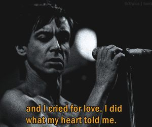 grunge, hipster, and iggy pop image