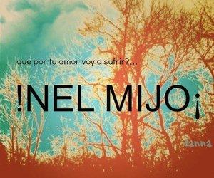 amor, nel, and no image