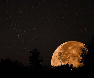 moon, night, and photography image