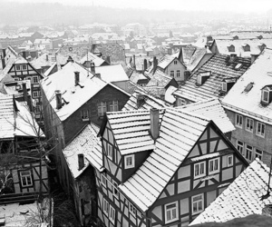 black & white and winter image