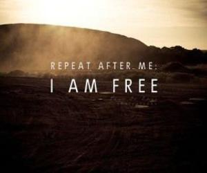 free, freedom, and quote image