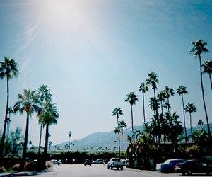 beach, cars, and cali image