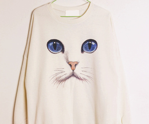 cat, sweater, and white image