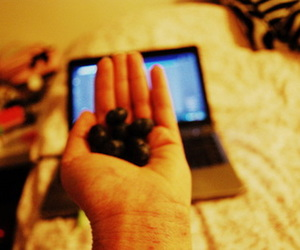 bed, blueberries, and colours image