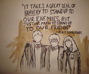 harry potter, quote, and friends image