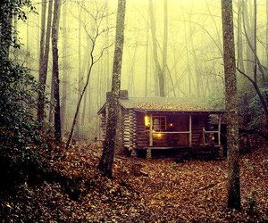 autumn, cabin, and cozy image