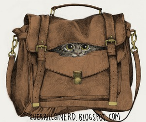 bag, cat, and fashion image