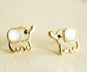 accessories, style, and animal image