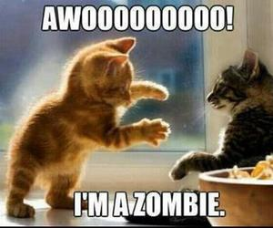 cat, zombie, and cute image