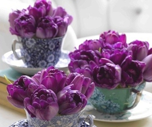 teacups and tulips image