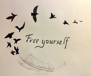 free, bird, and yourself image