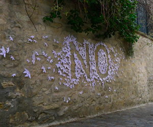 no, flowers, and wall image