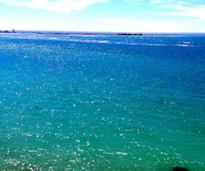 beach, sun, and 2013 image
