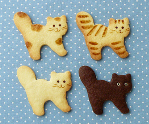cat and Cookies image