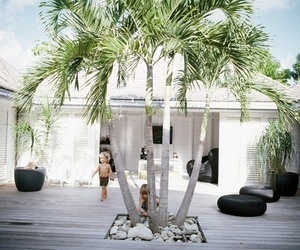 summer, house, and palms image