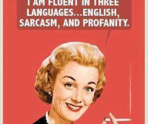 funny, sarcasm, and language image