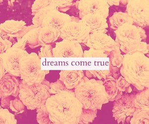 dreams, true, and flowers image